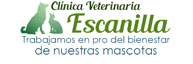 cropped-LOGO-VETERINARIA-PNG-5.png